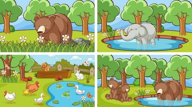 Фоновые сцены животных в дикой природе