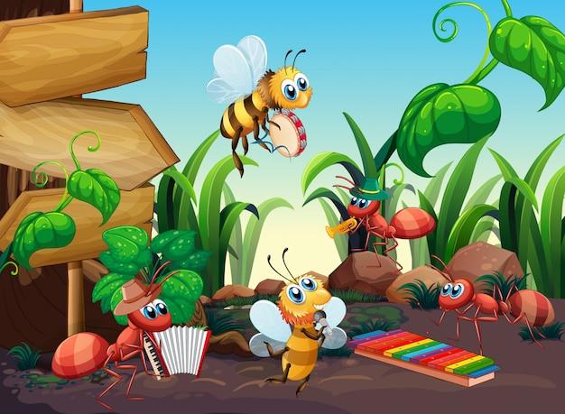 Музыкант насекомых в природе