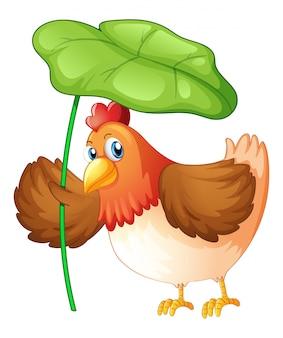 白い背景の上の緑の葉を保持している鶏