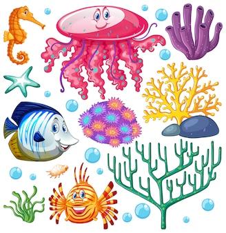 Набор морских существ на белом фоне