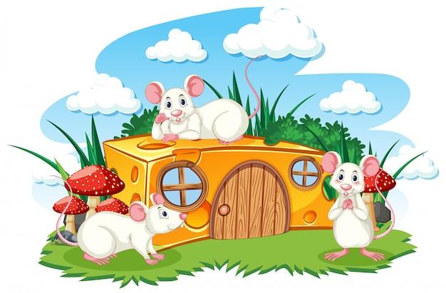 Сырный дом с тремя мышами в мультяшном стиле на белом фоне