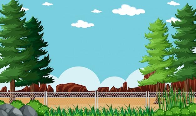 空の背景の自然公園の風景