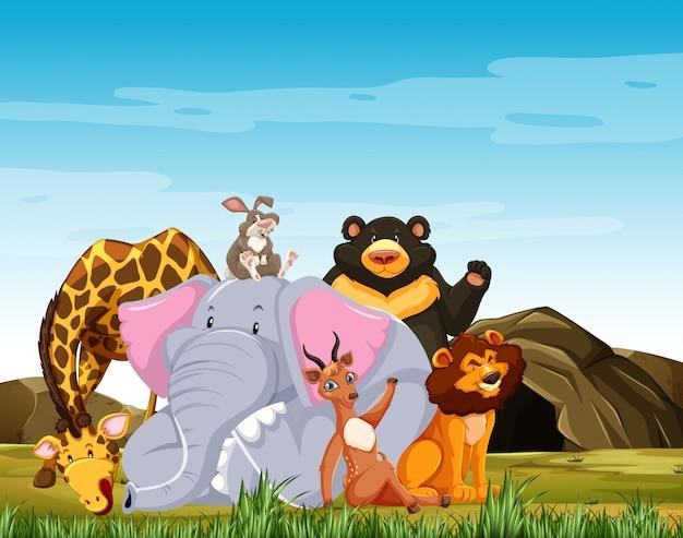 野生動物グループが森の背景に分離された笑顔漫画のスタイルをポーズします。