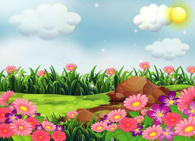 空と自然のシーンでピンクの花