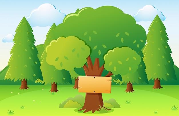 Парк сцены с деревянным знаком на большом дереве