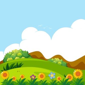 Фоновая сцена с зеленым газоном