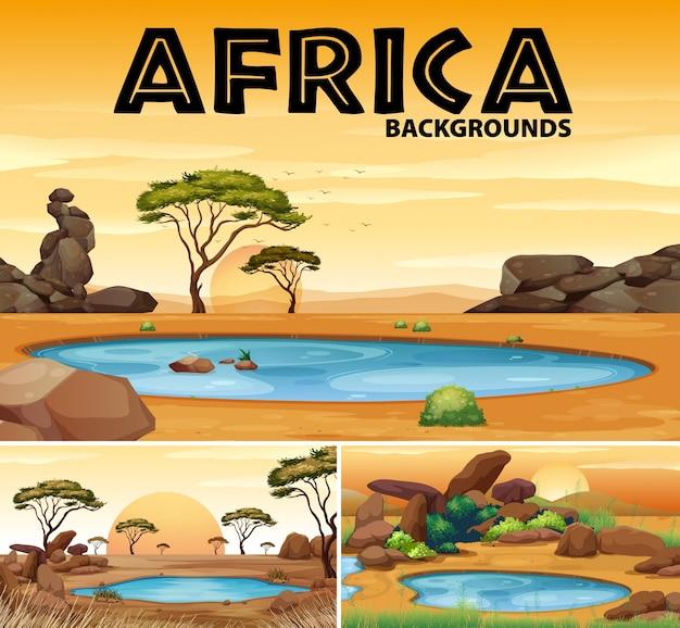 Африканские фоны с небольшими прудами и деревьями