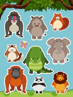 野外で野生の動物が多い