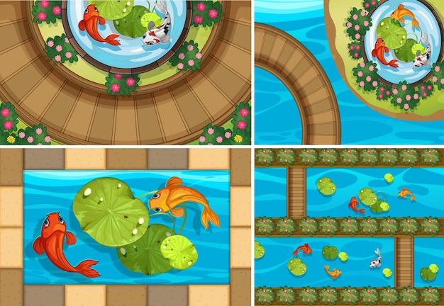 Четыре сцены с рыбой в прудах