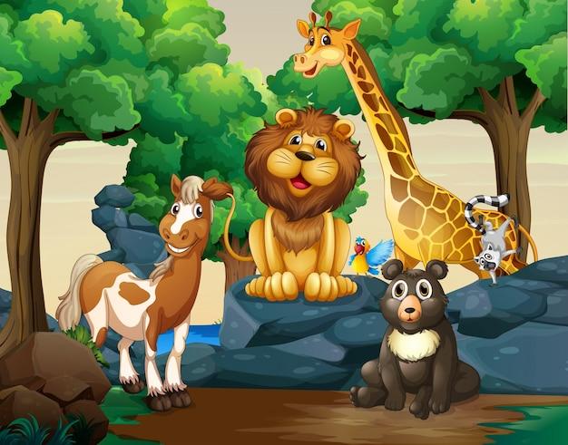森林の野生動物の種類