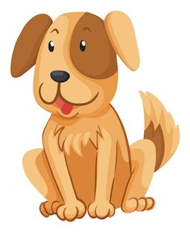 茶色の毛皮を持つ小さな犬