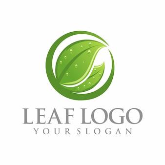 葉のロゴのテンプレート