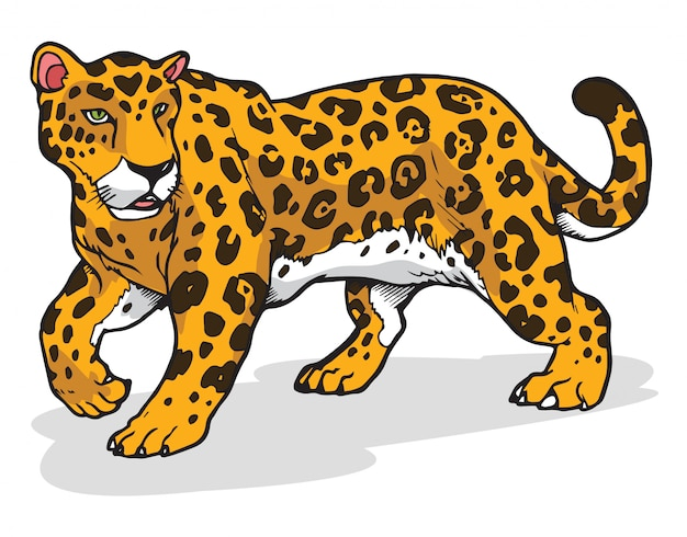 ジャガーのベクトル図