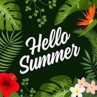 熱帯夏の背景