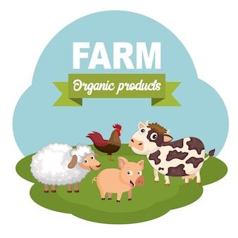 動物農場と有機肉料理のためのコンセプト