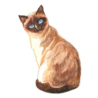 水彩イラストの茶色の猫