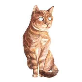 水彩風の猫の肖像画