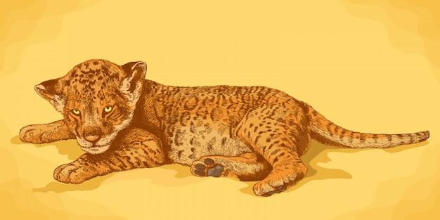 ライオンカブのアンティークイラストを彫刻