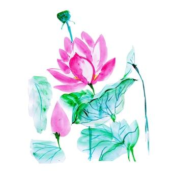 美しい水彩花の要素