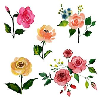 Коллекция красивых акварельных цветочных элементов
