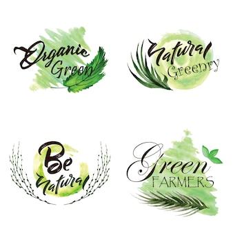 Коллекция логотипов для акварельных зеленых листьев