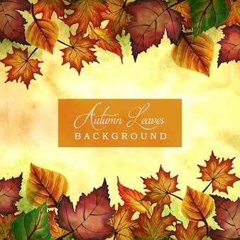 Осенние фоны с акварелью оранжевые, желтые и зеленые листья