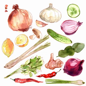 新鮮な野菜のセットです。