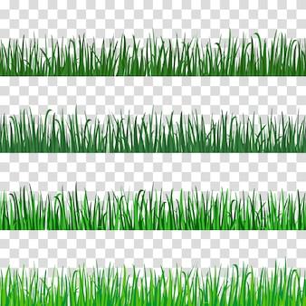 Зеленая трава луговая. весной или летом сажаем полевой газон.