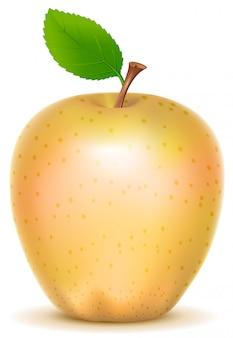 Желтое прозрачное яблоко с зеленым листом