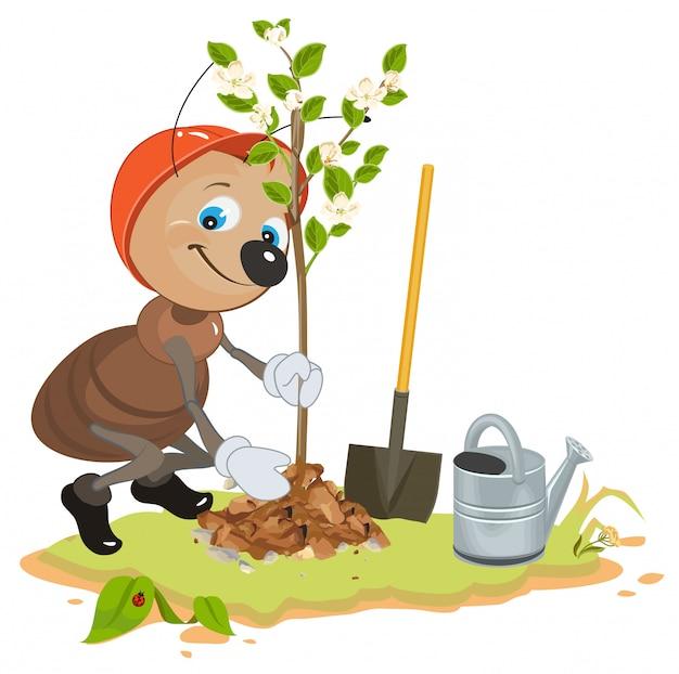 Муравей садовник сажает дерево. рассада плодовых деревьев. саженец яблони