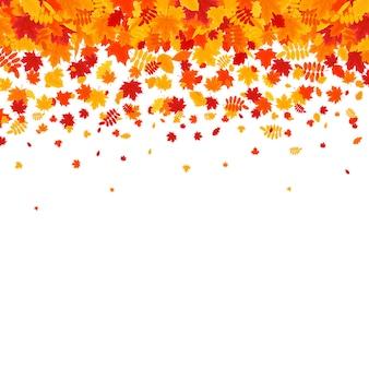 白い背景の上に落ちてくる紅葉