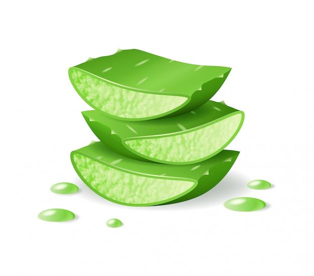アロエベラカットピース、現実的な緑の植物、葉、またはアロエドリッピングジュースでカットピース