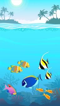 Красивый подводный мир, морской пейзаж, рыба и морское дно