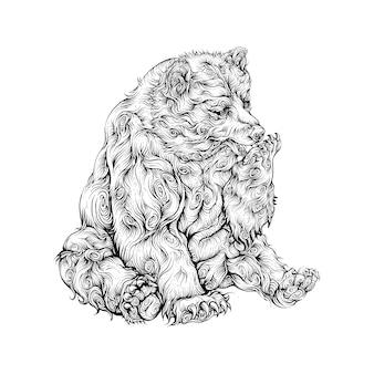 Медведь лижет руку рука рисунок
