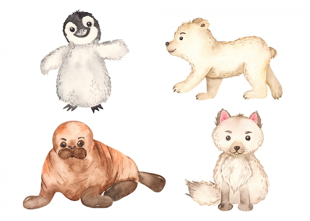 Симпатичные арктические животные. песец, пингвин, белый медведь, морж