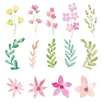 Коллекция акварельных цветов и листьев