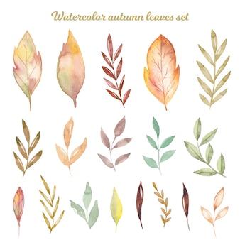 水彩画の秋の手描きの葉