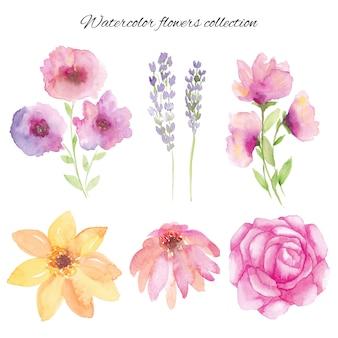 水彩手描き花セット