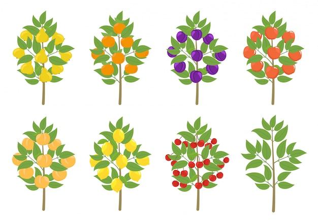 Набор фруктовых деревьев. яблочный, персиковый и лимонный мандарин. векторная иллюстрация плодово-фруктовые деревья, урожай растений.