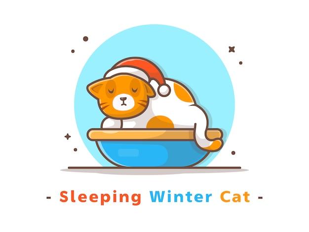 冬の季節に眠っている猫