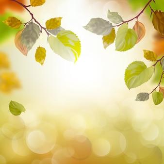 Осенний сезон
