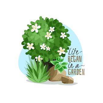 園芸植物のシンプルなイラスト
