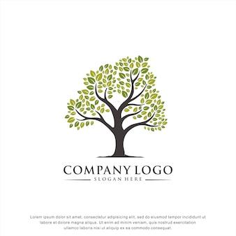 Креативное дерево логотип