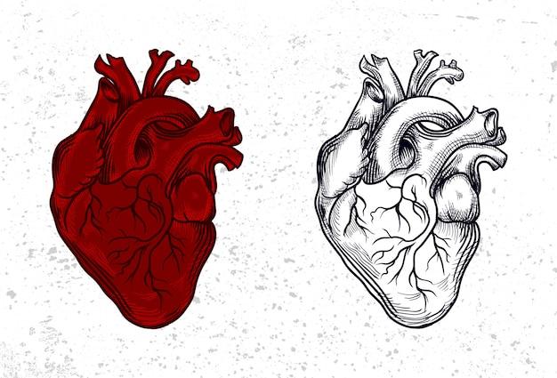 Сердце в винтажном стиле
