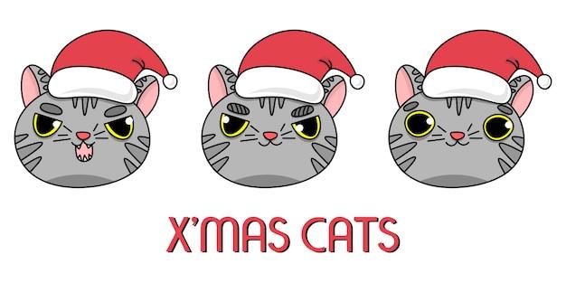 Серые коты в новогодней шапке