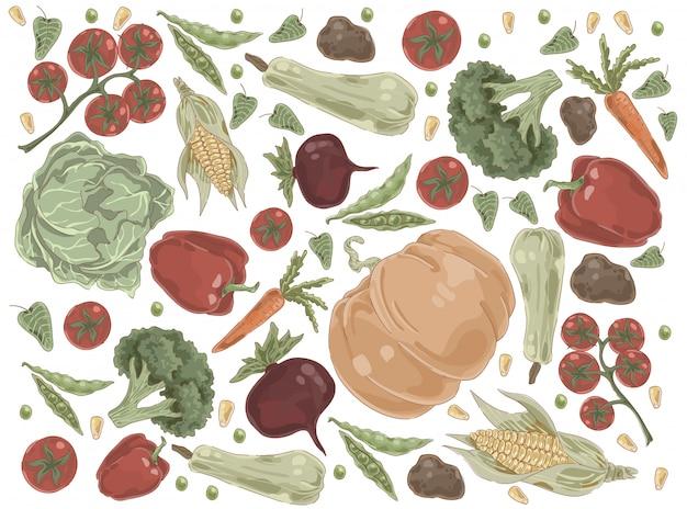 天然野菜、カボチャ、キャベツ、トマト、パプリカ、ブロッコリー、トウモロコシ、ニンジン、ビートルート、ジャガイモ、有機栄養