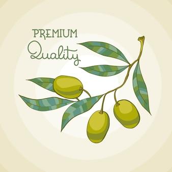 オリーブブランチのイラスト。オリーブの木。プレミアム品質の油