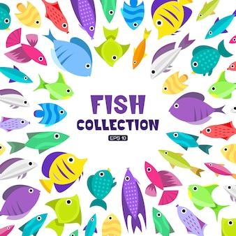 Сбор рыбы. мультяшный стиль. иллюстрация различных рыб