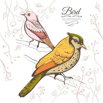 鳥のイラスト。手作りの背景。