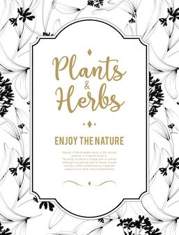 Растения и травы фон. элемент для дизайна или пригласительный билет